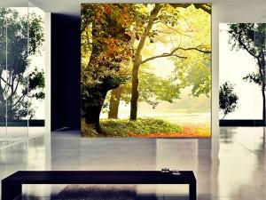 Fotomural Decorativo Entrada Al bosque
