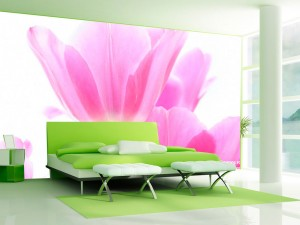 Fotomural Decorativo Tulipán Rosado