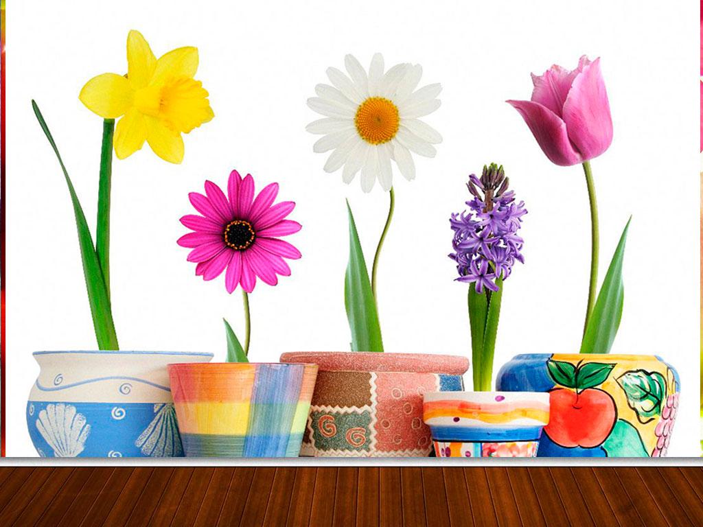 Fotomural decorativo flores en macetas fotomurales for Plantas en macetas