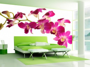 Fotomural Decorativo Orquideas