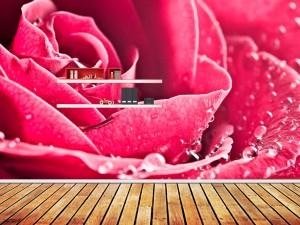 Fotomural Decorativo Rosa y Rocio