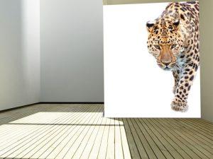 Fotomural Decorativo para Dormitorio: Leopardo (Copiar)