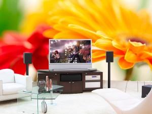 Fotomural Decorativo Gerbera Roja y Amarilla