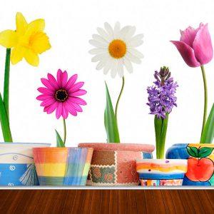 Fotomural Decorativo Flores en Macetas