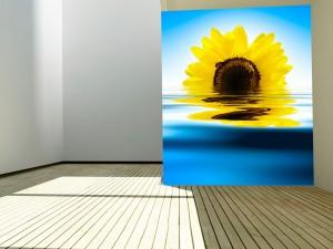 Fotomural Decorativo Girasol Reflejado