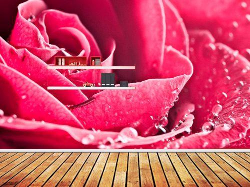 rose-3
