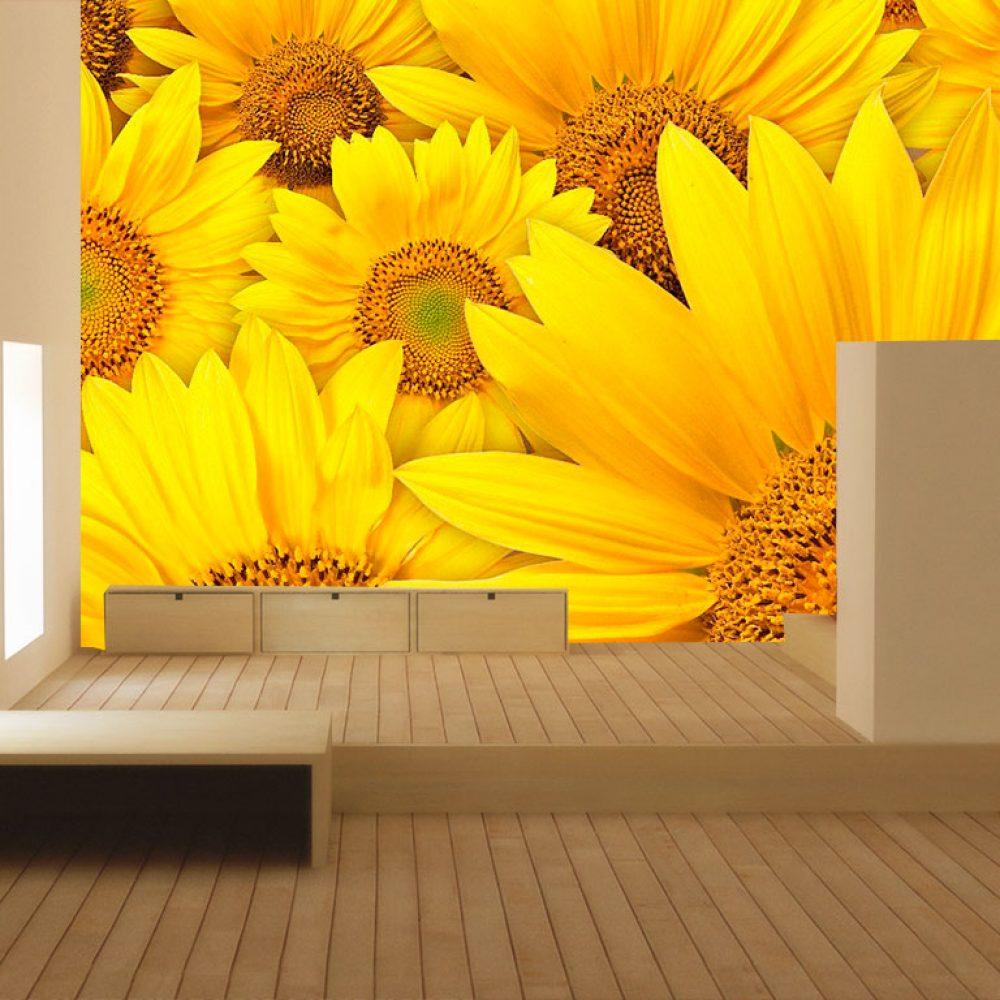 sunflower-field-1