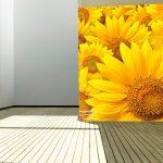 sunflower-field-2