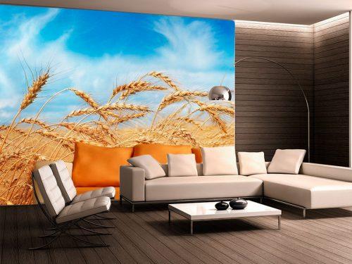 fotomural-decorativo-campos-de-trigo