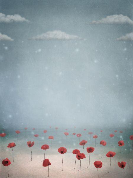 flores en niebla