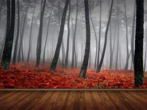 Fotomural Decorativo para Dormitorio: Bosque Rojo de Niebla