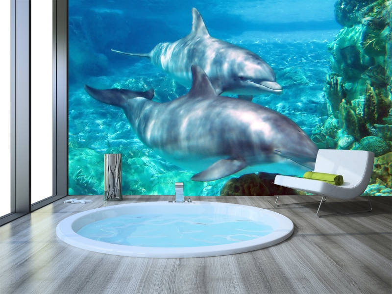 Fotomural ba o delfines - Fotomurales y vinilos ...