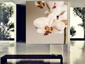 Fotomural Decorativo para Sala: Flores