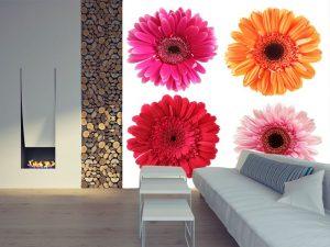 Fotomural Decorativo para Sala: Gerberas
