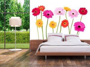 Fotomural Decorativo para  Dormitorio: Gerberas de Colores