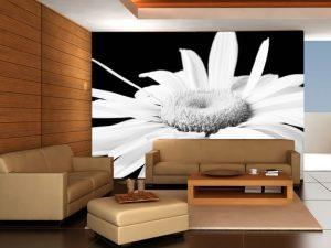 Fotomural Decorativo para  Sala:  Margarita en bco y negro