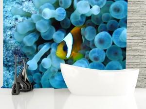 Fotomural Decorativo Baño: Pez payaso