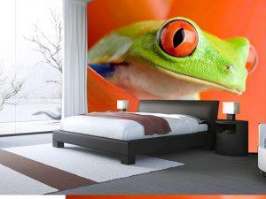 Fotomural Decorativo para Dormitorio: Rana