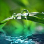 Rocío de lluvia