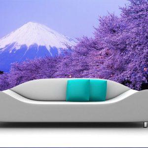 Fotomural Decorativo Sala Volcan Nevado