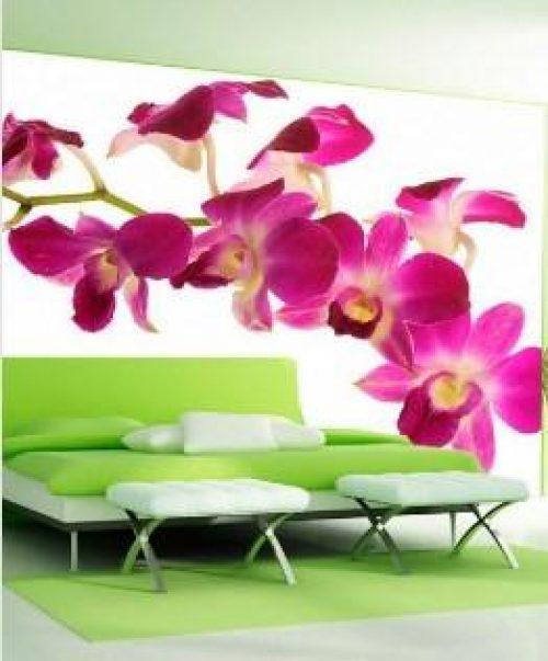 VistaPrevia 1060 1 500x603 - Fotomurales México Creamos tus espacios