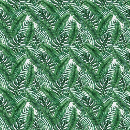 Fotomurales Mexico Papel Tapiz lavables palmera tropical de la acuarela deja patron transparente ilustracion del vector 02 500x500 - Decoración de Oficinas y Empresas
