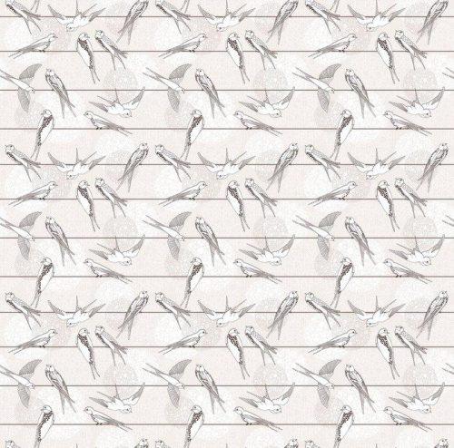 Fotomurales mexico papeles pintados autoadhesivos resumen sin patron aves en los cables 1 500x494 - Papel Tapiz Aves Monocromo 01