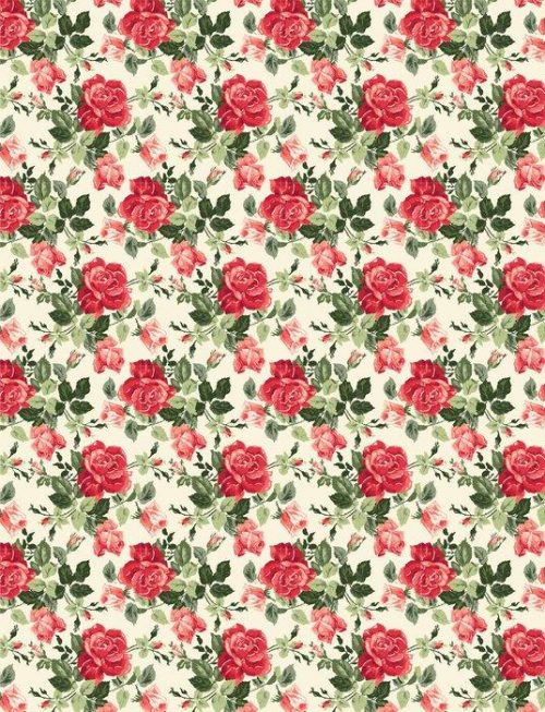 Fotomurales mexico papeles pintados fancy rose wallpaper 1 500x653 - Papel Tapiz Fancy Rose Fondo Blanco 01