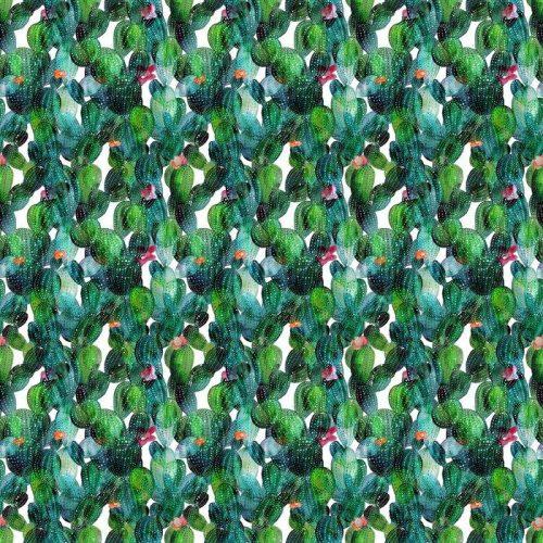 Fotomurales mexico papeles pintados lavables patron de cactus en el estilo de la acuarela 1 500x500 - Papel Tapiz Cactus en Fondo Blanco Tipo Acuarela 02