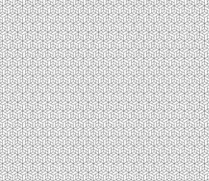 Fotomurales mexico papeles pintados lavables patron geometrico transparente con cubos 1 1 300x260 - Papel Tapiz