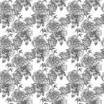 Fotomurales-mexico-papeles-pintados-patron-transparente-monocromo 1