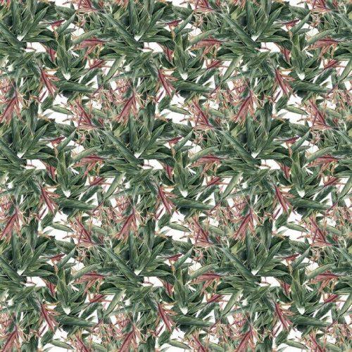 Fotomurales mexico papeles pintados pintura de la acuarela de la hoja y las flores modelo inconsutil 1 500x500 - Papel Tapiz Naturaleza Abstracta 01