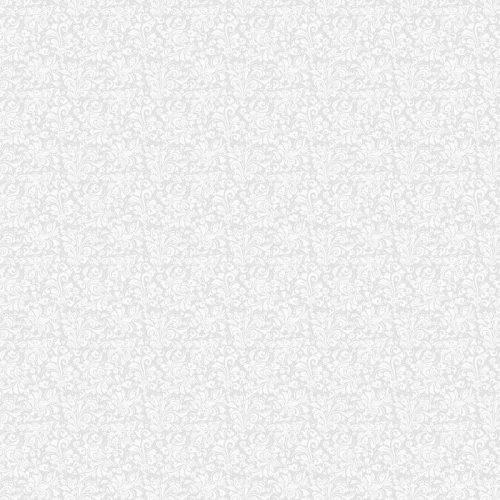 FONDO GRIS TRANSPARENTE CON EL PATRÓN BLANCO EN ESTILO BARROCO. VECTOR ILUSTRACIÓN RETRO. IDEAL PARA IMPRIMIR EN TELA O PAPE 500x500 - Fotomural Papel Tapiz Barroco y Elegantes