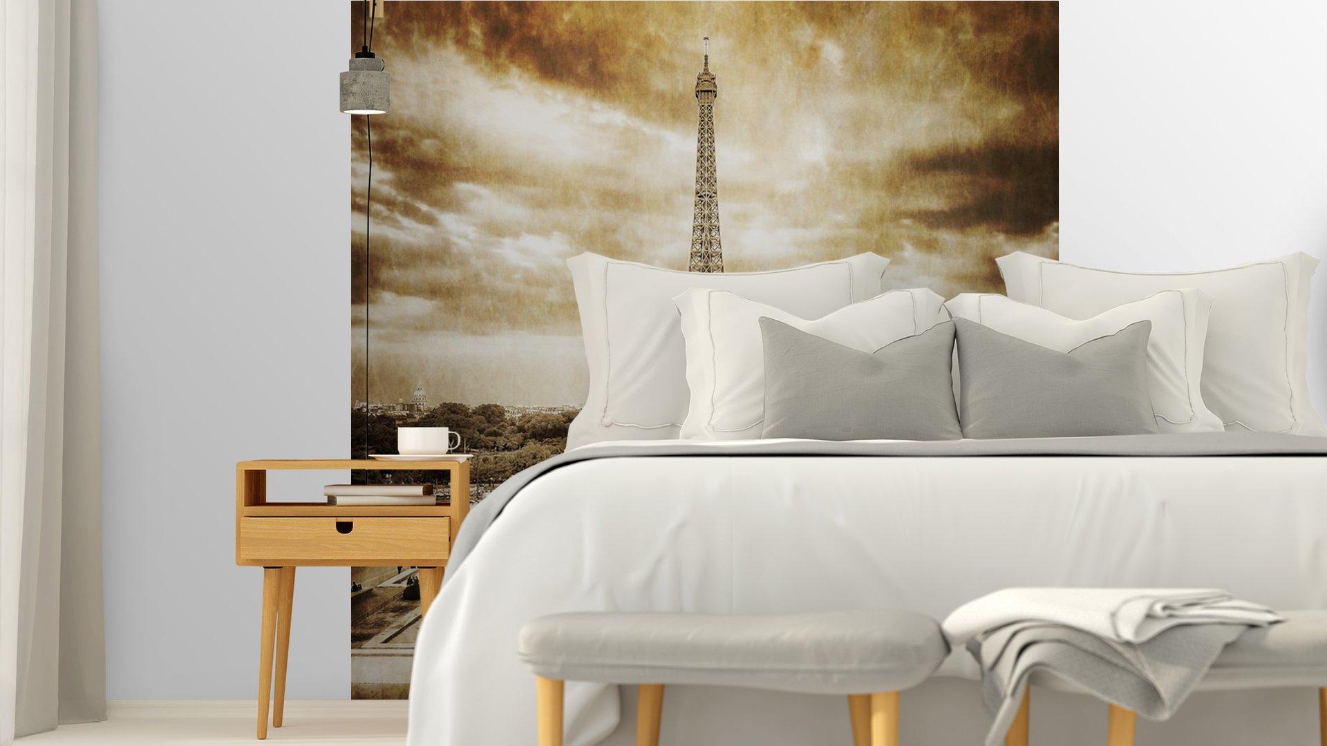 TORRE EIFFEL DESDE TROCADERO MONOCROMO VENDIMIA5 - Fotomural Tapiz Vista Torre Eiffel Color Monocromo